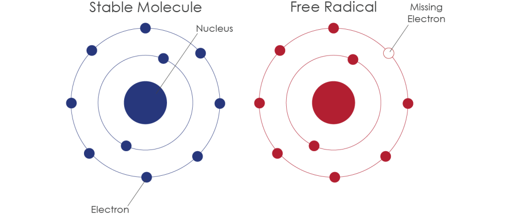 free-radical-lza5ivs9y7k1c43ct0anyrzpwkyy1mepp1hmslfgz0